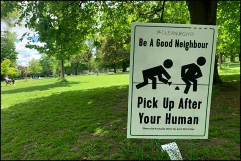 Humans Start Defecating in Open, Toronto Park Puts up 'Be a Good Neighbor, Pick up After Your Human' Signboards