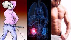 खुशखबरी: किडनी की पथरी के लिए हर्बल दवा विकसित की गई, जानें डिटेल्स...