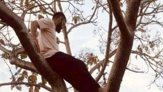 Irfan Pathan Trolls Virat Kohli's Throwback Picture of Climbing a Tree | POST