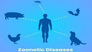 World Zoonoses Day 2020: What is Zoonosis And How Does The Infectious Disease Spread