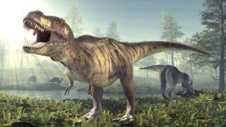 Yes! Asteroids Killed The Dinosaurs And Not Volcanoes, Says Study; Researchers Say 'It's the Only Plausible Explanation'