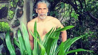 शर्टलेस मिलिंद सोमन ने अपने शरीर को पत्तों से ढका, फैंस बोले- कियारा आडवाणी को कॉपी कर रहे हो?