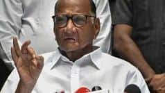 Anyone With Self-respect Will Not Continue to Hold The Post: Sharad Pawar on Maharashtra Governor