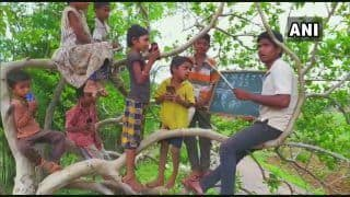 Anything For Education: Students & Teachers in Maharashtra Village Climb Trees To Get Mobile Network For Online Classes
