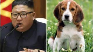 WHAT? Kim Jong-un Orders North Koreans to Hand Over Pet Dogs So That They Can be Used as Meat!