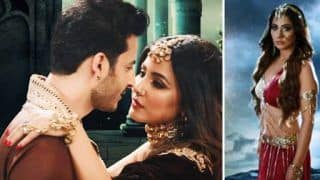 Naagin 5 August 16, 2020 Written Update: Adi Naagin, Cheel Aakesh, Naag Raj Reborn Again, History to Repeat Itself?