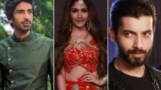 Naagin 5 Spolier Alert: Bani Performs Tandav, Adi Naagin And Cheel to Have a Face-off