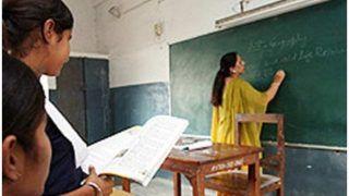 CBSE Teaching Manual: सीबीएसई ने कक्षा 6 से 10 तक के इन विषयों के लिए जारी किया टीचिंग मैनुअल, जानें पूरी डिटेल
