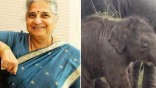 Bengaluru Zoo Names Elephant Calf After Sudha Murthy To Acknowledge Her Contribution Towards Wildlife Conservation