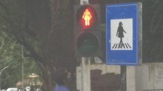Mumbai Crossing Shows Woman Walking in Signal, Image Goes Viral After Aaditya Thackeray Shares