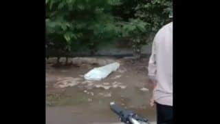 Viral Video: लाश को देखने जुट रही थी भीड़, अचानक सफेद चादर उठा खड़ा हो गया शख्स, फिर...
