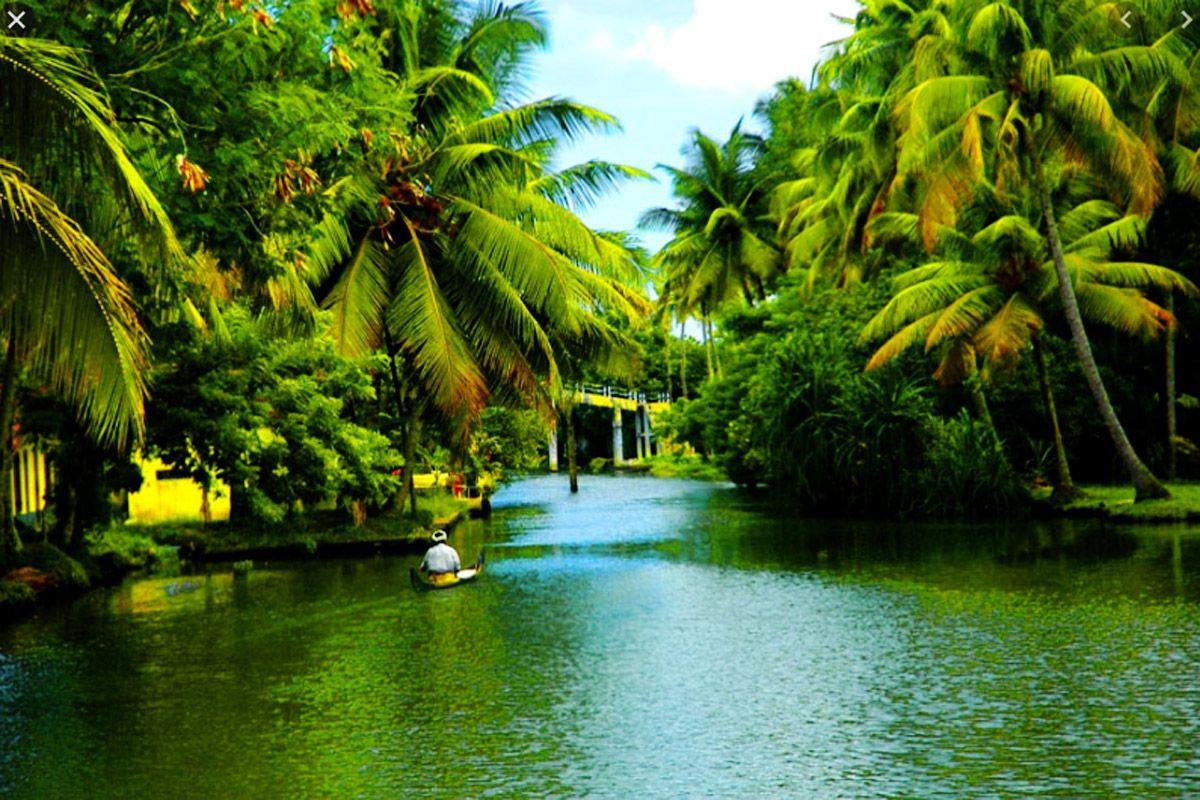 5 Amazing Activities You Must Do in Kerala
