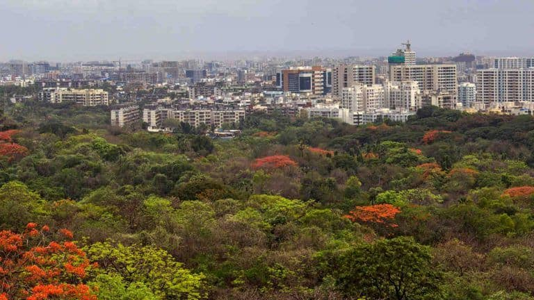 Mumbai's Aarey Declared a Forest; Metro Car Shed Project to be Relocated to Kanjurmang