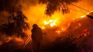 California Wildfire Ravages Across 25 Miles in a Day, 3 People Dead