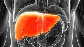 How to Prevent Liver Damage: What to Include in Diet And What not