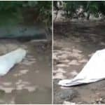 Panic in Ghaziabad After 'Dead Body' Found on Roadside, Turns Out to be Sleeping Man | Hilarious Video Goes Viral