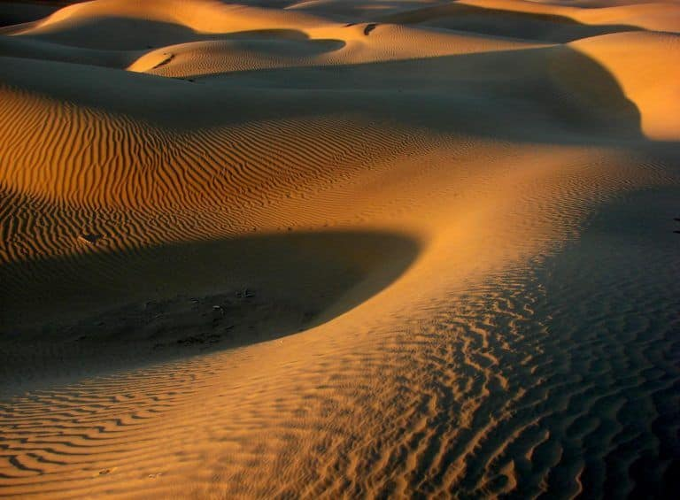Unbelievable! 'Lost' River That Ran Through Thar Desert in Rajasthan 172,000 Years Ago Found