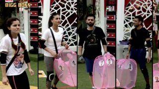 Bigg Boss 14 October 15 Written Episode: Pavitra Punia, Eijaz Khan, Nishant Malkhani Win The Task