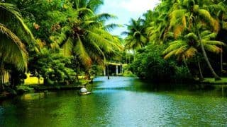 Kerala Travel Guidelines: Kerala Allows Tourists Again, Keeps Beaches Shut Till November 1