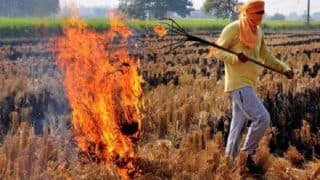 Delhi-NCR Pollution News: SC Appoints Ex-judge Madan Lokur as One-man Panel to Monitor Stubble Burning