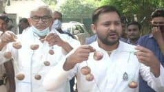 Bihar Elections: Tejashwi Fires Fresh Salvo at BJP With 'Onion Garland' in Last Mile of Poll Campaign