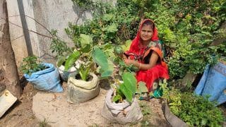इस राज्य ने पेश की मिसाल, ग्रामीण महिलाएं लिख रहीं तरक्की की नई इबारत...
