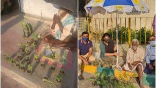 After 'Baba Ka Dhaba', Help Pours in For Elderly Man Who Sells Plants on The Roadside in Bengaluru
