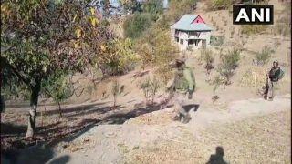 VIDEO: सुरक्षाबलों ने कहा...छोटे बाहर आ जा, कोई गोली नहीं मारेगा, सुनकर रोने लगा आतंकी