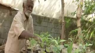 Social Media Impact: 79-Year-Old Roadside Plant Seller's Sales Double After Viral Photo
