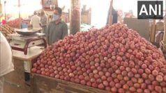 सोना-चांदी नहीं, नासिक में चोरों ने 15 क्विंटल प्याज का किया सफाया, किसान को हुआ बड़ा नुकसान