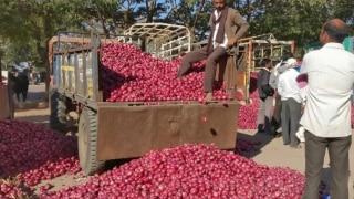 Onion Import: प्याज आयात के नियमों में ढील की समय सीमा 31 जनवरी तक बढ़ी, भाव कम होने के आसार