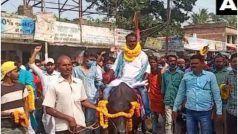 बिहार चुनाव में अजब-गजब: भैंसे पर बैठकर नामांकन करने पहुंचे ये नेताजी, बताई ये वजह