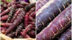 Health Tips: सर्दियों में रोजाना करें पर्पल गाजर का सेवन, नहीं सताएगी कोई बीमारी