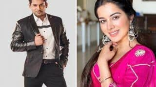 Bigg Boss 14 Evicted Contestant Sara Gurpal Blames Sidharth Shukla For Her Eviction, Says 'He Manipulated Hina, Gauahar'