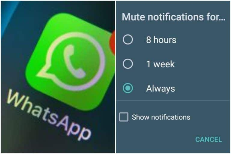 Good News! WhatsApp Now Allows Users to Mute a Chat Forever, Here's How You Can Do It