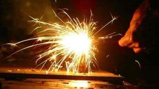 Ahead of Diwali, Telangana High Court Asks State to Impose Ban on Sale And Use of Firecrackers