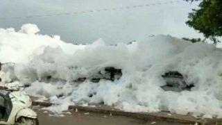 Toxic Foam Scatters Over Bridge in Madurai's Sellur | Watch Video