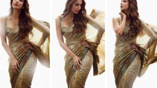 Malaika Arora Looks Radiant in Manish Malhotra's Ginger Bronze Sequin Saree, Yay or Nay?