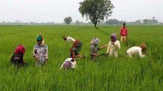 हरियाणा में 'किसानों' के लिये 194 करोड़ की विभिन्न योजनाओं का प्रावधान