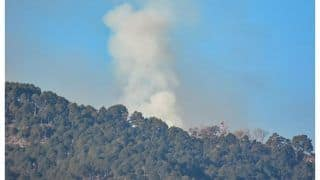 Army Refutes Reports of India Carrying Strikes In PoK Acrorss LoC, Calls Them 'Fake'