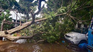 Cyclone Nivar Crosses Coast Near Pondicherry; 3 Killed, Over 1,000 Trees Uprooted in Tamil Nadu