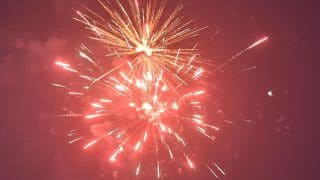 Delhi Issues Complete Ban on Storage, Sale and Bursting of Diwali Firecrackers Over Pollution Concerns