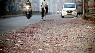 Despite Ban, Many Delhiites Burst Firecrackers on Diwali; Over 850 Booked