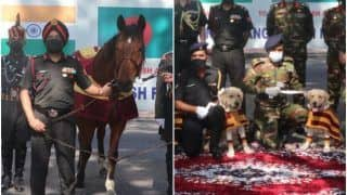 'Bonds of Friendship': Indian Army Gifts 10 Mine Detection Dogs & 20 Trained Military Horses to Bangladesh