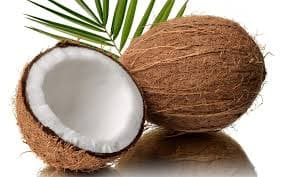 Wow! This Bali College Allows Students to Pay Their College Fees in Coconuts, Here's Why