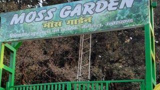 India Gets Its First Moss Garden Near Uttarakhand's Nainital