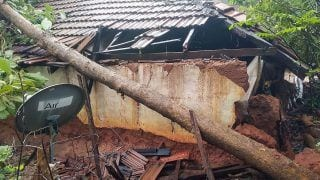 Cyclone Nivar Updates: 1500 Hectares of Farmland Damaged in TN, CM Makes Damage Assessment