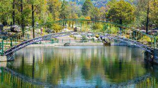 Palampur's Famous Tourist Destination, Saurabh Van Vihar Reopens For Tourists