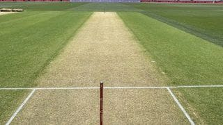 India vs Australia 1st Test 17 Dec 2020: First Look of Adelaide Pitch Ahead of Pink-Ball D/N Test