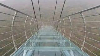 Bihar Glass Bridge: बिहार के नालंदा में पहला ग्लास ब्रिज बनकर तैयार, इतना है शानदार, देखें Video